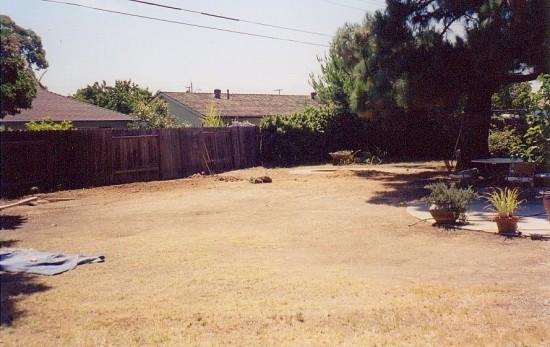 whiteonricecouple garden