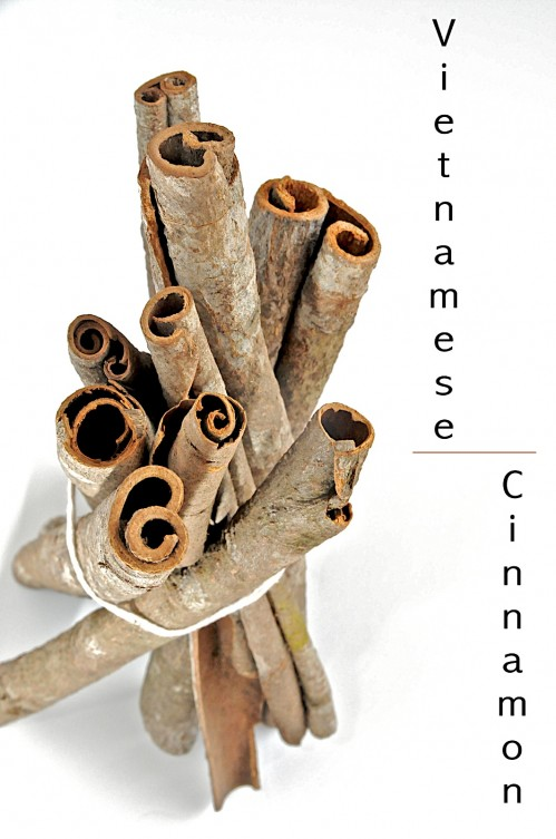 What is Vietnamese Saigon Cinnamon Cassia Tree
