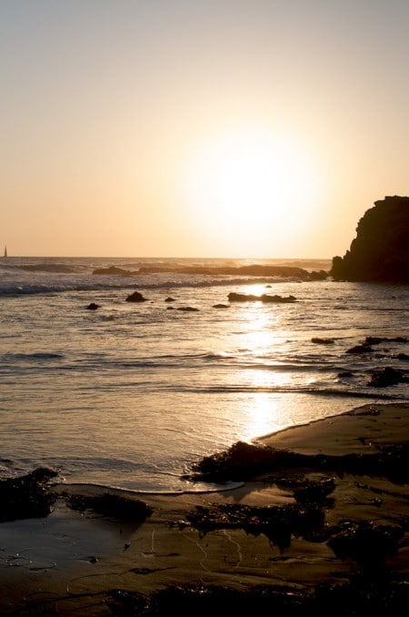crystal-cove-state-park-8