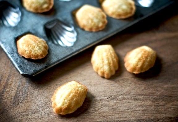 chocolate madeleines recipe