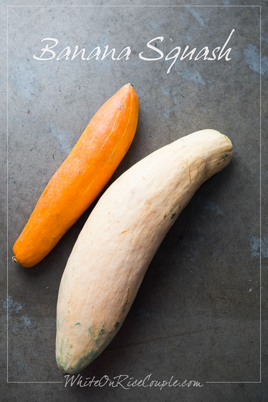 Winter Squash and Pumpkin Guide : Banana Squash | @whiteonrice