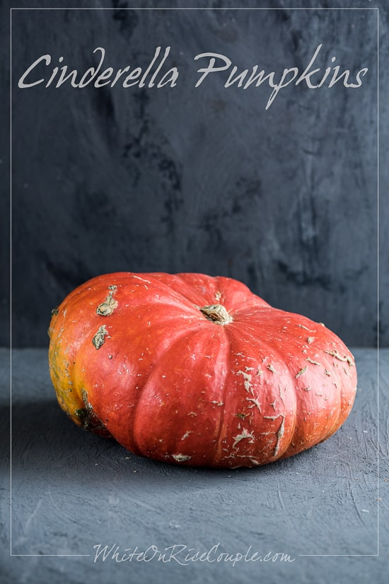 Winter Squash And Edible Pumpkins Guide For Fall Squash