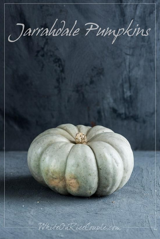 Jarrahdale Pumpkin Turban Squash Winter Squash Varieties and Pumpkin Guide by Todd and Diane