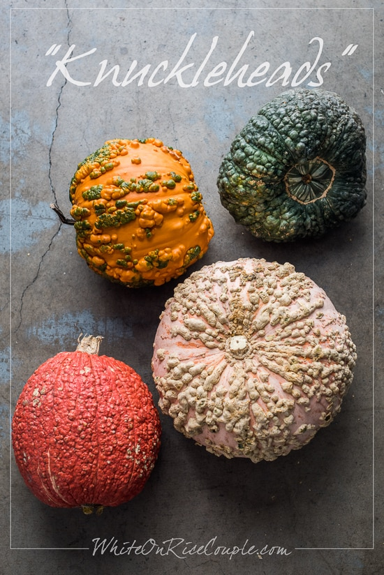 Ultimate Winter Squash and Pumpkin Guide from Todd & Diane
