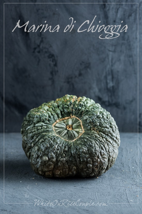 Winter Squash Varieties and Pumpkin Guide by Todd and Diane