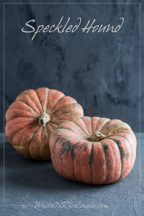Winter Squash and Pumpkin Guide | Speckled Hound Squash @whiteonrice