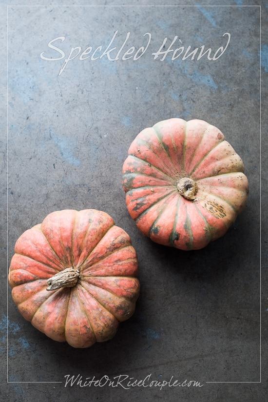 Winter Squash and Pumpkin Guide | Speckled Hound Squash