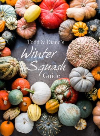 Winter Squash and Pumpkin Guide to Different Varieties | @whiteonrice