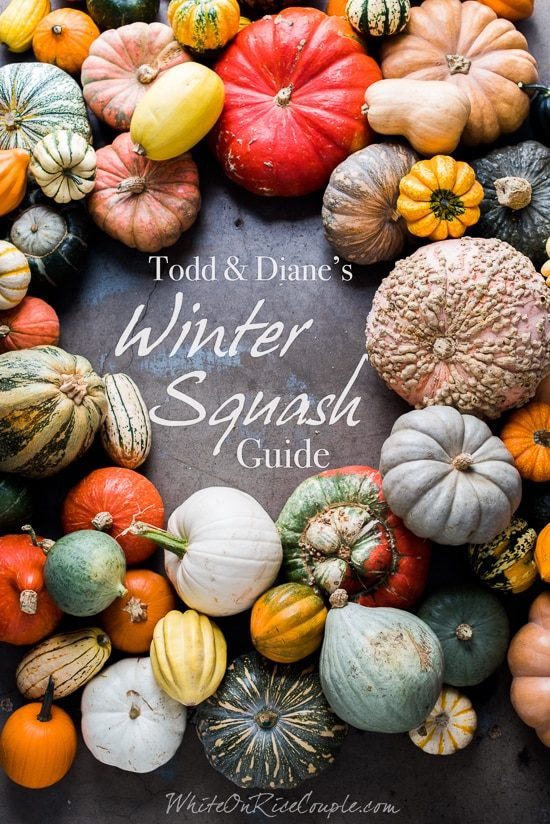 Winter Squash and Pumpkin Guide to Different Varieties   @whiteonrice