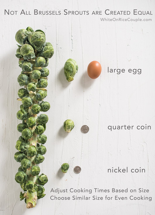Guide to different sizes of brussels sprouts and collection of easy brussels sprouts recipes | @whiteonrice