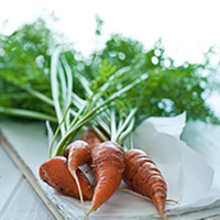 Thumbnail image for Carrot seeds sowed!