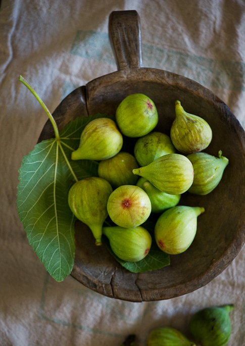 fresh picked figs