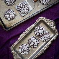Thumbnail image for Joy to Your World & Ginger Molasses Dark Chocolate Crinkle Cookies