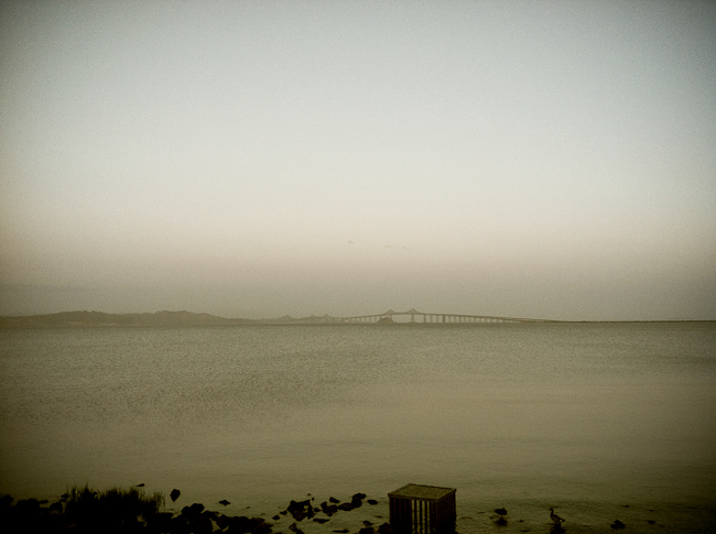 bay area bridge