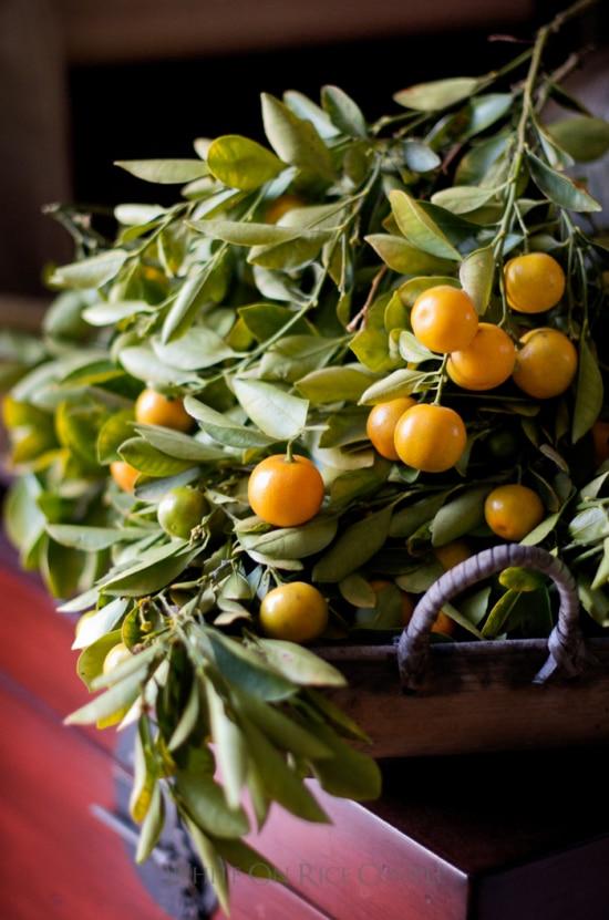 kalamansi limes calamondin oranges cocktail recipe | WhiteOnRicecouple.com