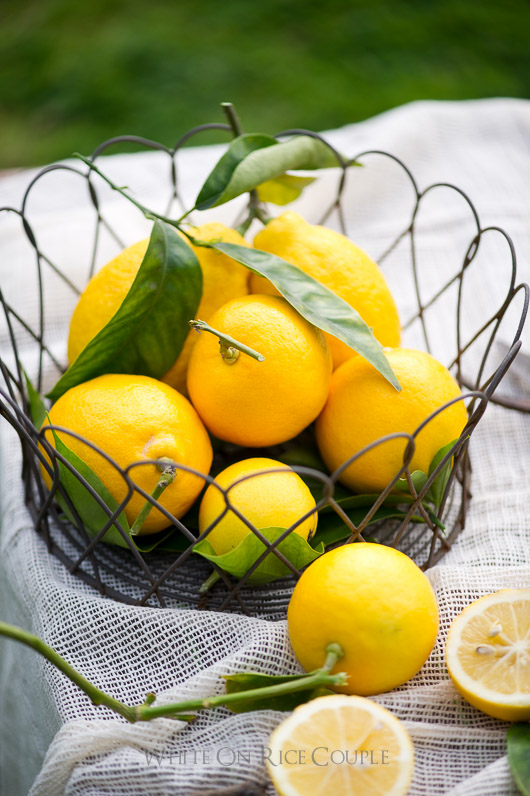 Meyer Lemon Recipes on @whiteonrice