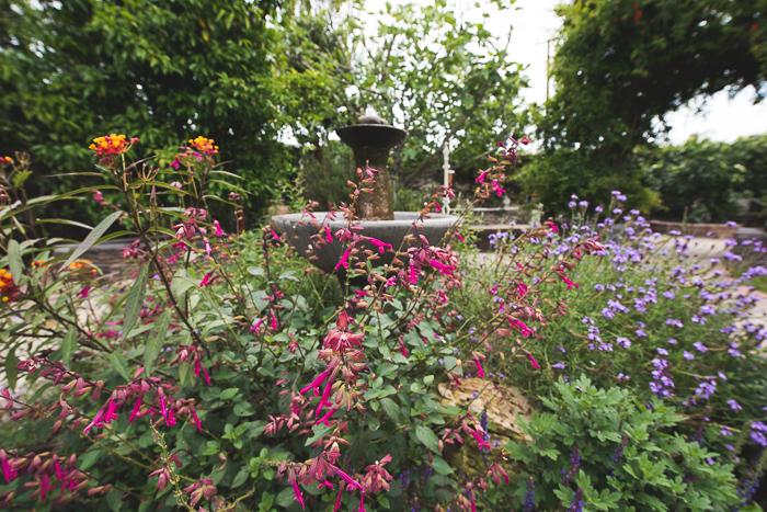 @whiteonrice garden