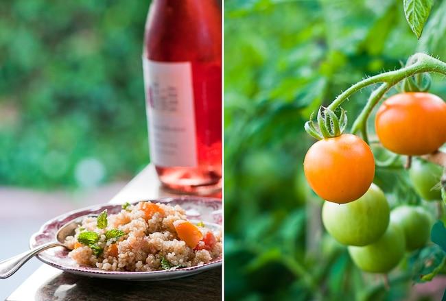 Quinoa Salad Recipes. Quinoa Tomato Salad Recipe