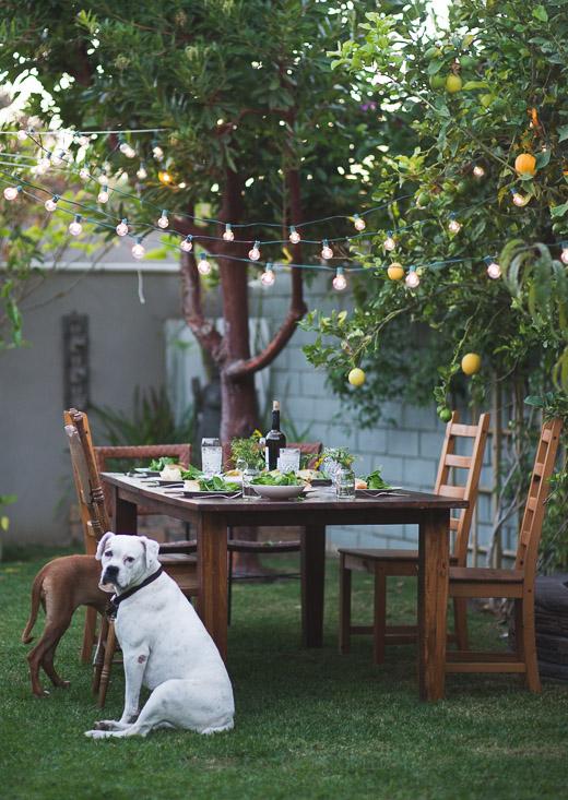 Garden at WhiteOnRiceCouple.com