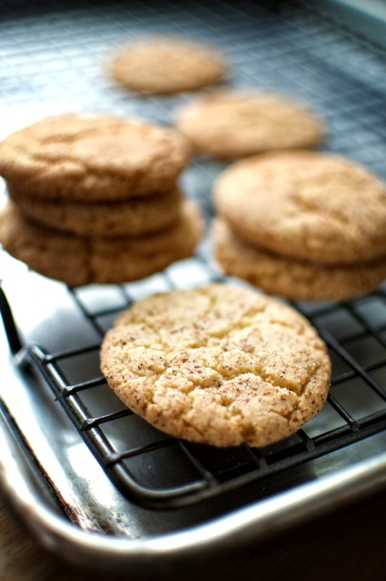 snickerdoodle-cookie recipe