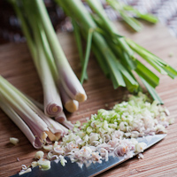 Thumbnail image for Lemongrass- perfect edible landscape