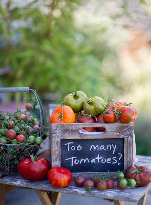 Great and delicious Summer Tomato Recipes @whiteonrice