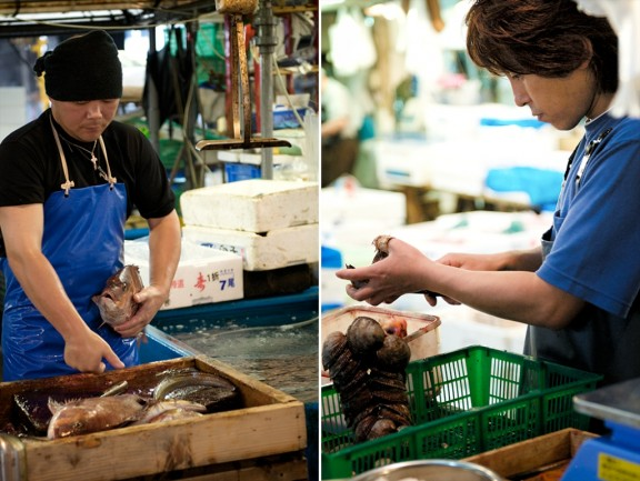 tsukiji-japan-fish-market-