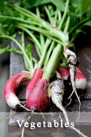 victory-garden-vegetables-page