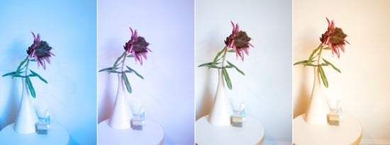 white balance photography