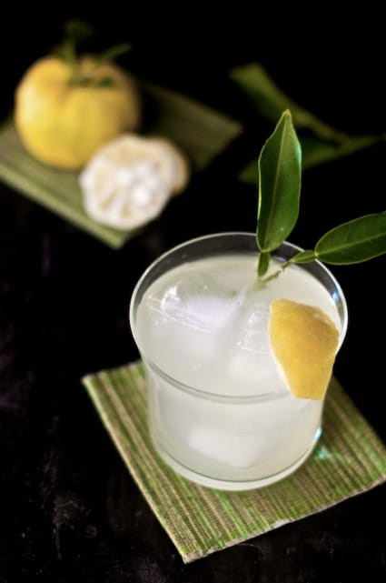 yuzu cocktail recipe