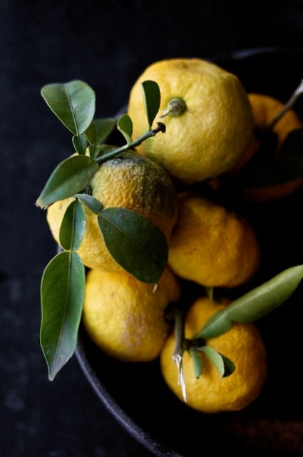 yuzu japanese citron lemon